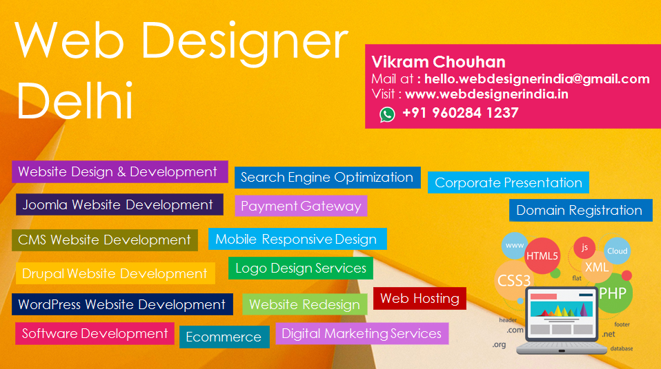 Best Web Designer In Delhi Web Design Company In Delhi